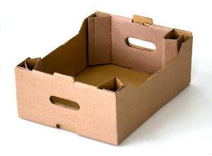 картонные лотки для овощей и фруктов