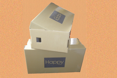 самосборные коробки #016